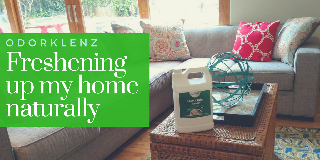 Freshening up my Home Naturally with OdorKlenz
