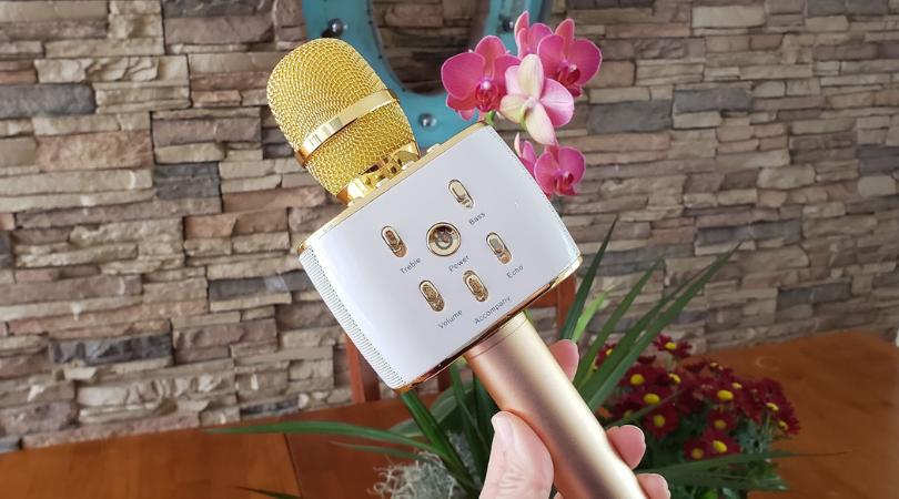 karaoke microphone white elephant gift