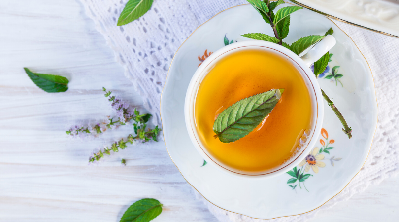 Magical Mint: Remedy to Common Ailments