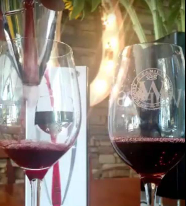 ROWPA Premium Wine Aerator Set
