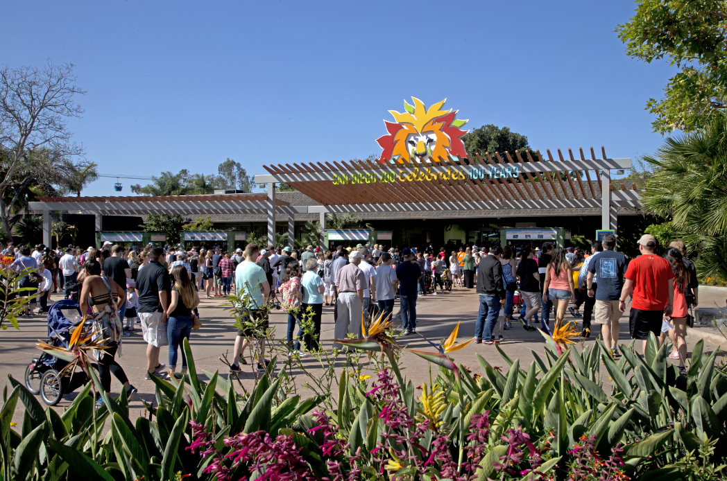 Celebrate the San Diego Zoo's Centennial Birthday